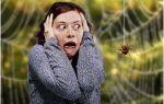 Откуда берется боязнь насекомых и как от нее избавиться