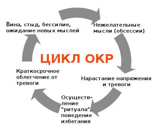 цикл невроза навязчивых состояний