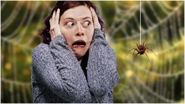 девушка, сходящая с ума от вида пауков