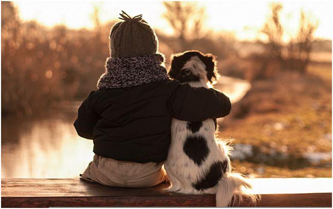дружба ребенка и собаки
