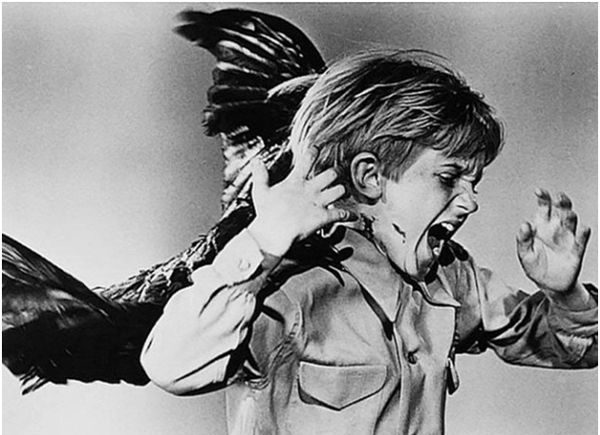 ребенок и птица